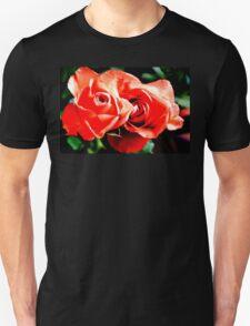 Apricots Roses T-Shirt