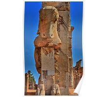 Old Cow - Persepolis - Iran Poster