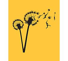 Dandylion Flight Photographic Print