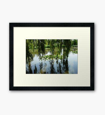 Montreal Botanical Gardens: the pond Framed Print