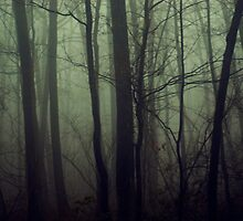 The Forest and the Fog by KendraJKantor