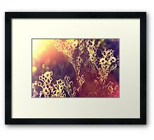 Painting with light. Framed Print