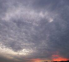 Winter Sunset by Rochelle Buckley
