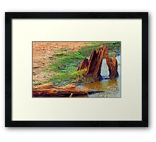 Lake Ivan Drained Framed Print