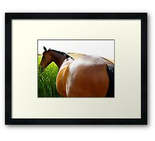 Fred............does my bum look big in this? Framed Print