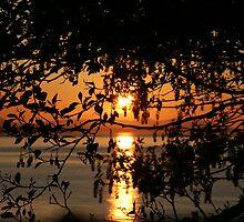 Sun Shines Thru by starlitewonder