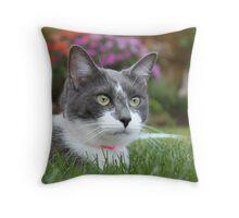 Outdoor Feline Throw Pillow