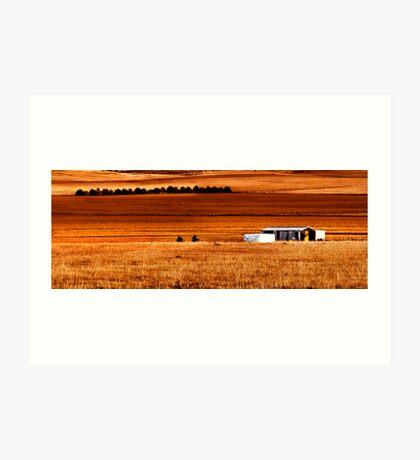 Dry field Art Print