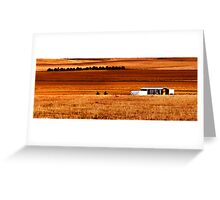 Dry field Greeting Card