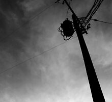 Telephone Pole by Colby Greening