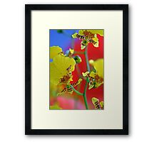 George Ramsay Orchids Framed Print