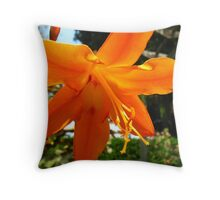 Slashing Orange Lily Throw Pillow
