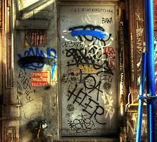 NEW YORK CITY DOOR by Diane Peresie