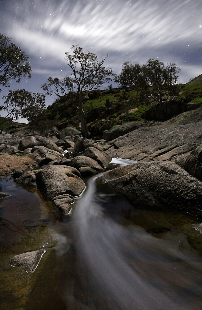 Reedy Creek by pablosvista2