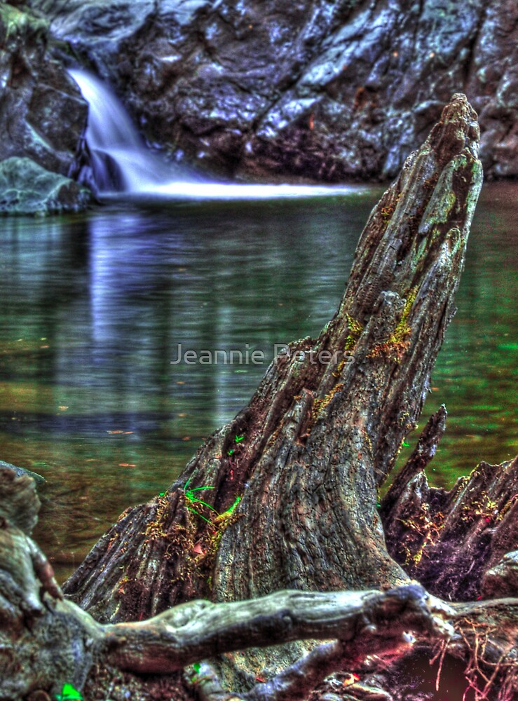 Shan creek swimming hole by Jeannie Peters