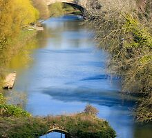 Avon River by Nigel Donald
