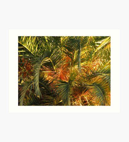 Palm Jungle Art Print