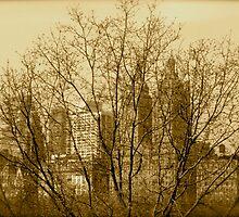 NYC - Morning by VenturAShot