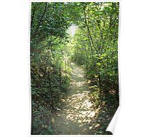 Walden Trail Poster