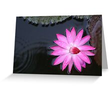 Blooming in the rain Greeting Card