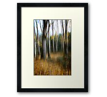 Fall at your feet Framed Print