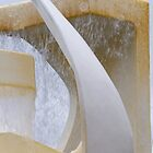Albatross Fountain by Werner Padarin
