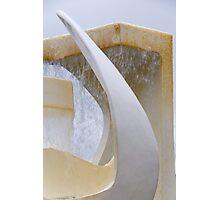 Albatross Fountain Photographic Print