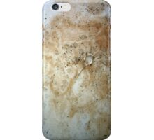 Destroyed Series 11 iPhone Case/Skin