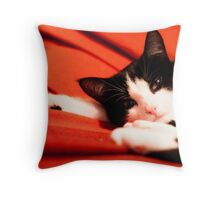 Nearly grown up Throw Pillow