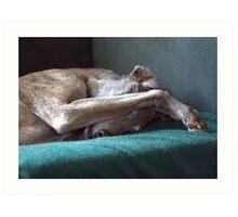 Barney - senior houndy Art Print