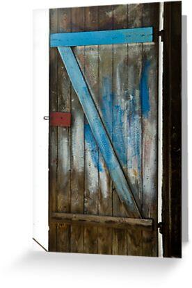 The Door by Ilva Beretta