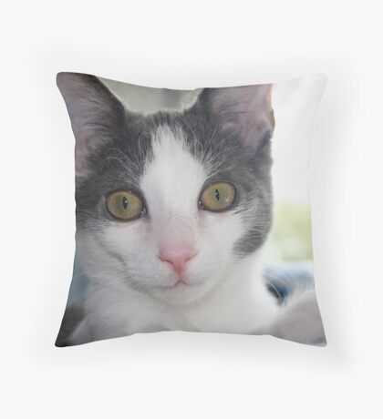 Our Little Man (P is for Pet) Throw Pillow