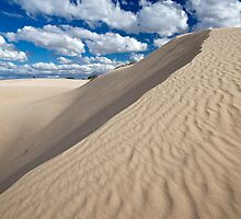 Sand Dunes by Lynn and Lee Deamer