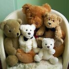 A Family of Teddy Bears by June Jones