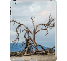 Mesquite Tree Remains - Death Valley iPad Case/Skin