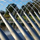 Fountain SOP Australia by Kamran Baig