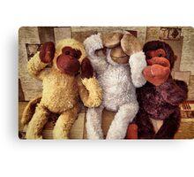 The Three Wise Monkey's ! ... Canvas Print