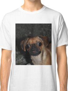 Confused pug Classic T-Shirt