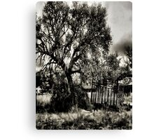 In The Shade Of A Tree   2   ( BoneYard Series ) Canvas Print