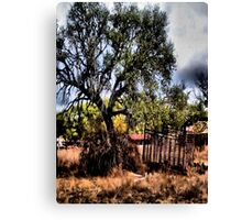 In The Shade Of A Tree     ( BoneYard Series ) Canvas Print