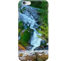 Bishop Bay Falls iPhone Case/Skin