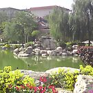 Eden Pond by barnsy