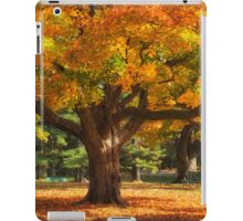Autumn Colours 6 - MacKenzie-King Estate iPad Case/Skin