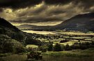 Bassenthwaite Lake by David Robinson