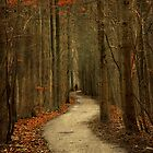 Pathless Path by LarsvandeGoor