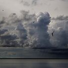 Before Storm in Lagoon by Antanas
