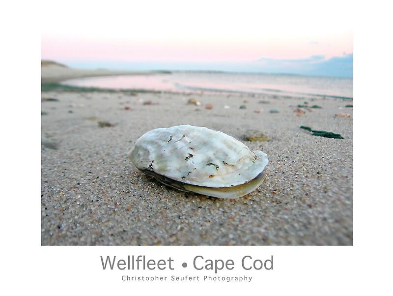 wellfleet women Women, infants & children  provincetown - wellfleet - harwich find a location our services  outer cape health services .