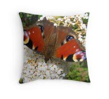 Peacock on Buddleia Throw Pillow