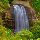 Looking Glass Falls, Brevard, NC  by mrthink