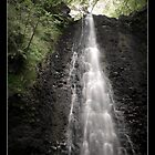 Falling Foss Waterfall by woodgag